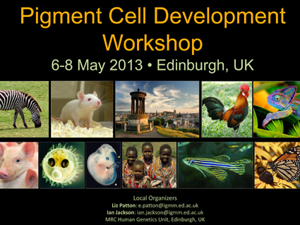 International Pigment Cell Development Workshop,  6-8 May 2013 in Edinburgh, UK http://devbio.hgu.mrc.ac.uk